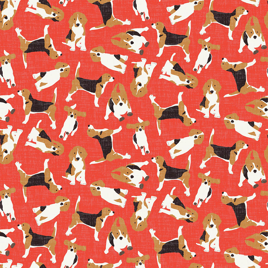 Beagle Drawing - Beagle Scatter Coral Red by MGL Meiklejohn Graphics Licensing