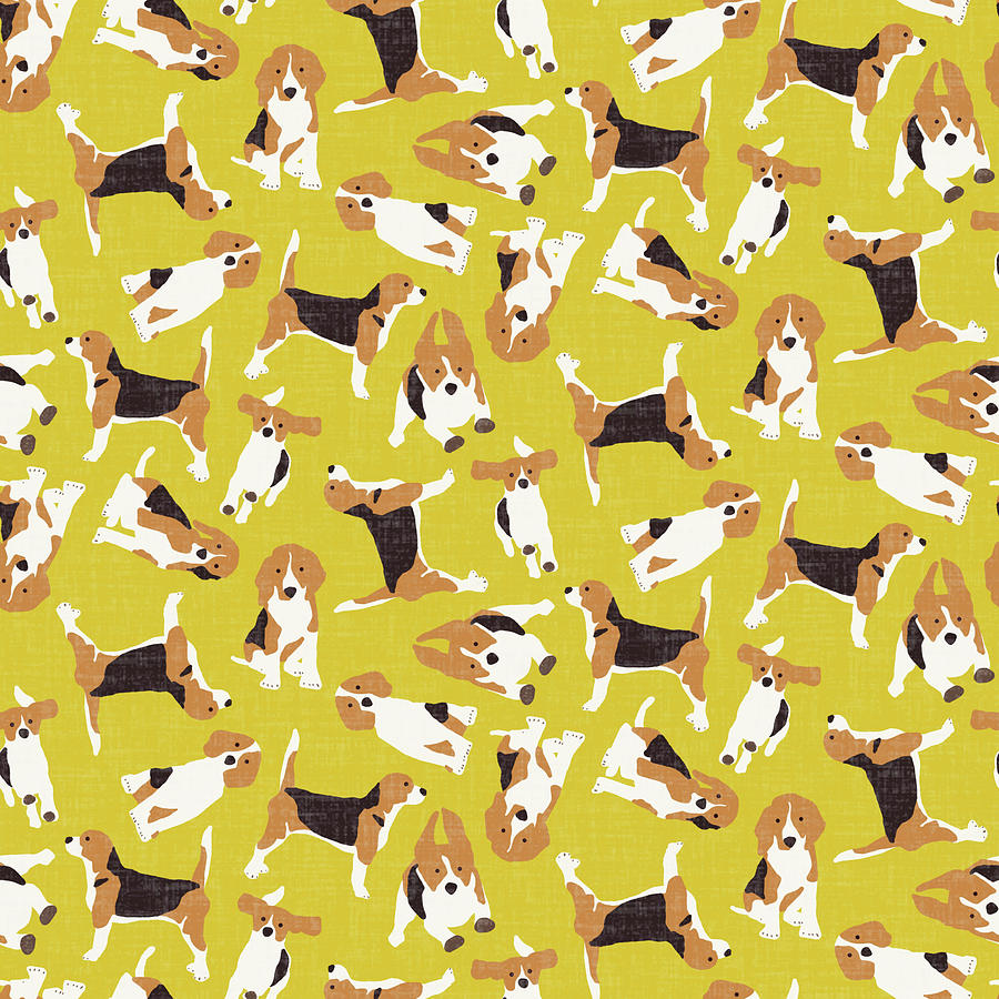 Beagle Drawing - Beagle Scatter Yellow by MGL Meiklejohn Graphics Licensing