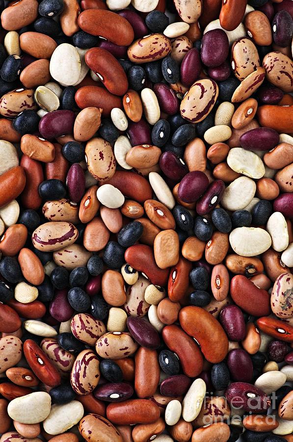 Beans Photograph