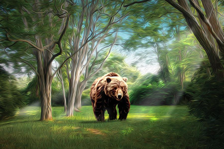 Landscape Photograph - Bear Light by Richard Trahan