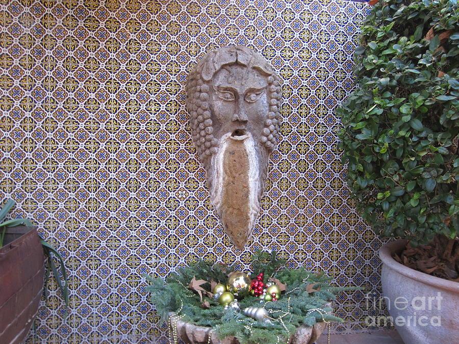 Fountain Photograph - Bearded Wonder by Melissa Stinson-Borg