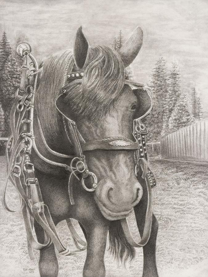 Horse Drawing - Beast Of Bourbon by Rick Moore