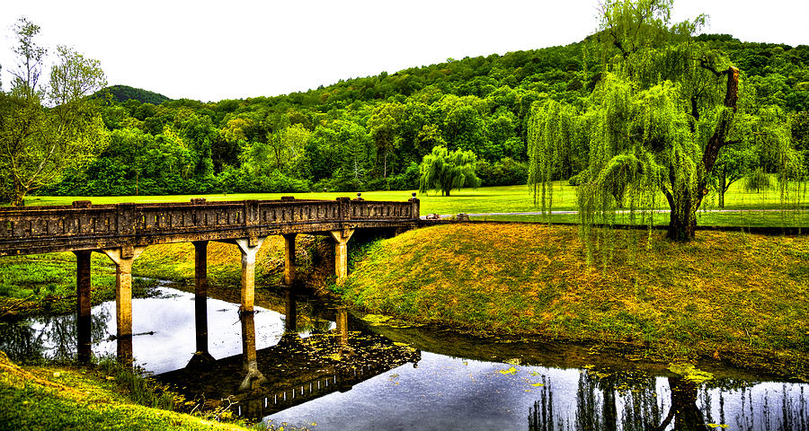 Landscapes Photograph - Beautiful Blowing Spring Park by David Patterson