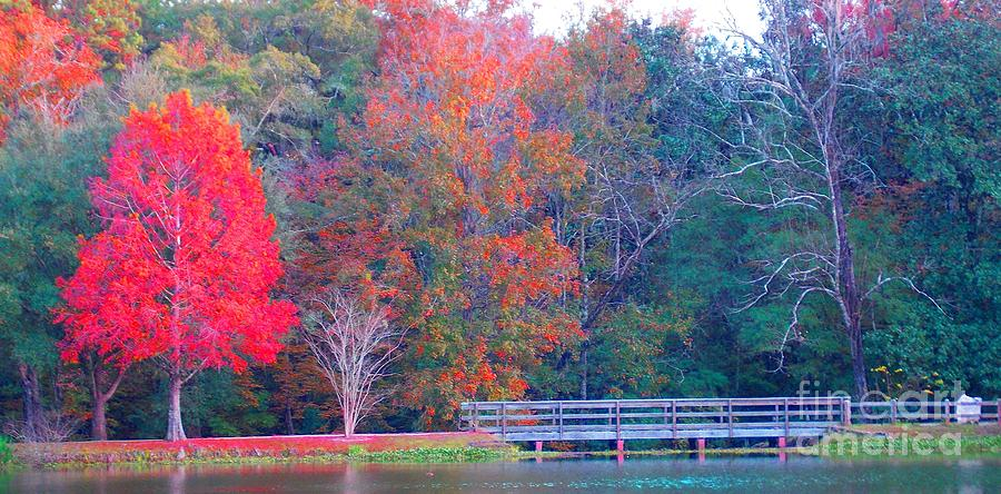 Fall Photograph - Beautiful Bridge by Annette Allman