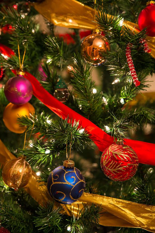 Christmas Tree Bill.Beautiful Christmas Tree