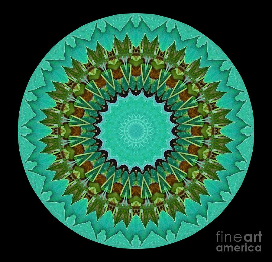 Mandala Photograph - Beautiful Circle by Annette Allman