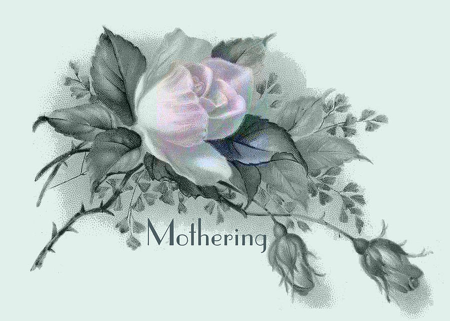 Beautiful Digital Art - Beautiful Flowers For Mothers Day by Sarah Vernon