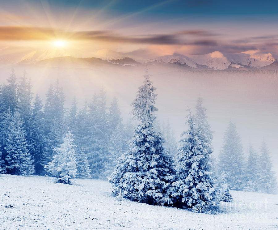 Beautiful Landscape Winter Sunset Photograph By Boon Mee