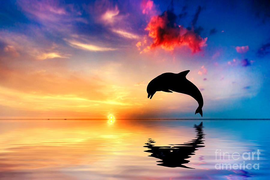 Sea Photograph - Beautiful Ocean And Sunset With Dolphin Jumping by Michal Bednarek