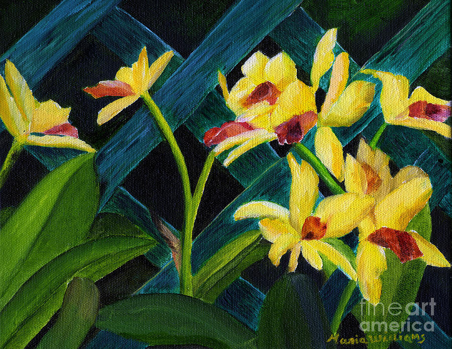 Orchids Painting - Beautiful Orchids  by Maria Williams