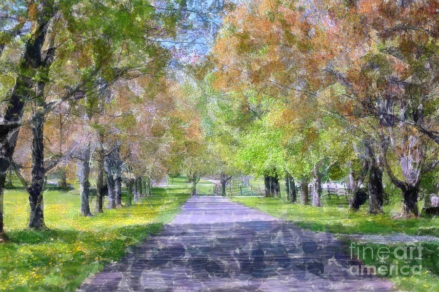 Knox Photograph - Beautiful Pathway by Kathleen Struckle
