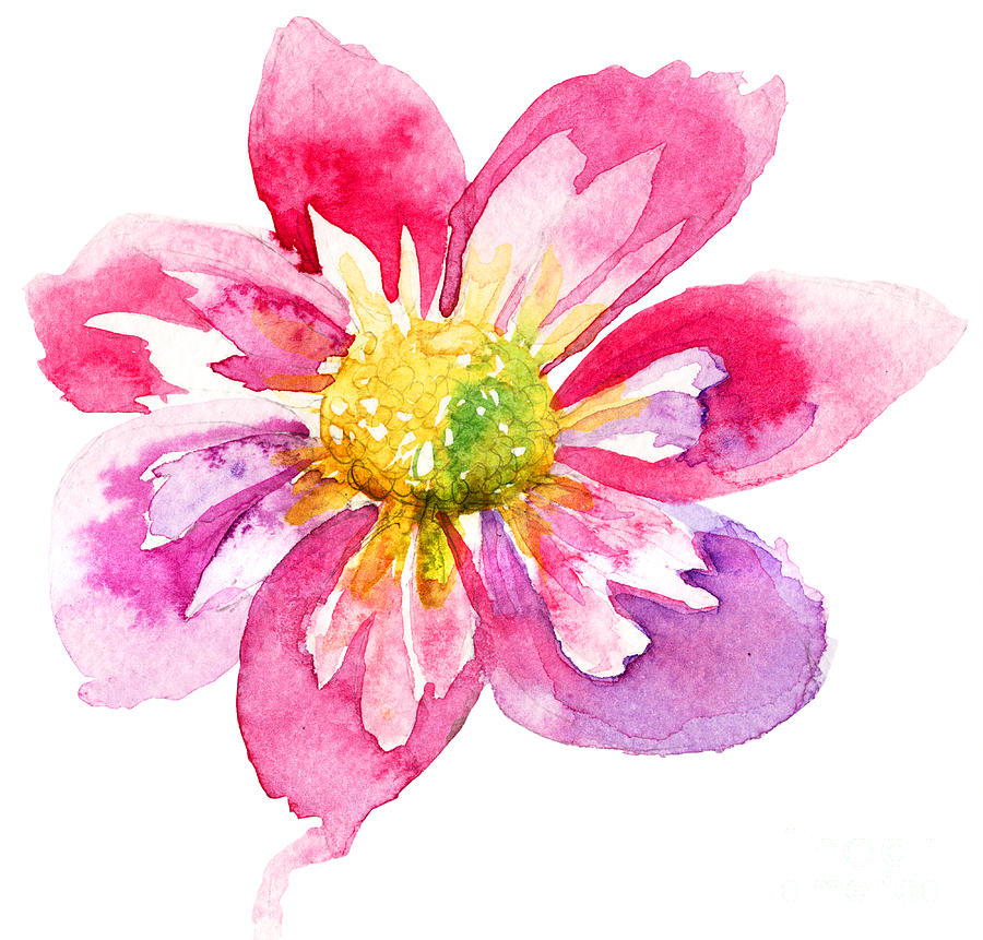 Beautiful pink flower painting by regina jershova for Abstract watercolour flowers