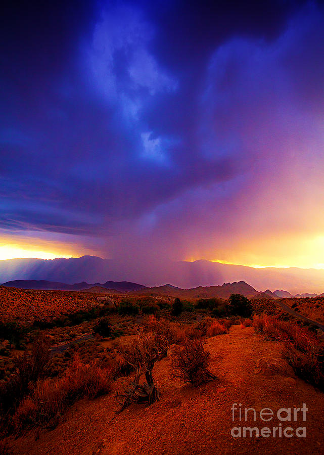 beautiful rain storm sunrise in the scenic desert with. Black Bedroom Furniture Sets. Home Design Ideas