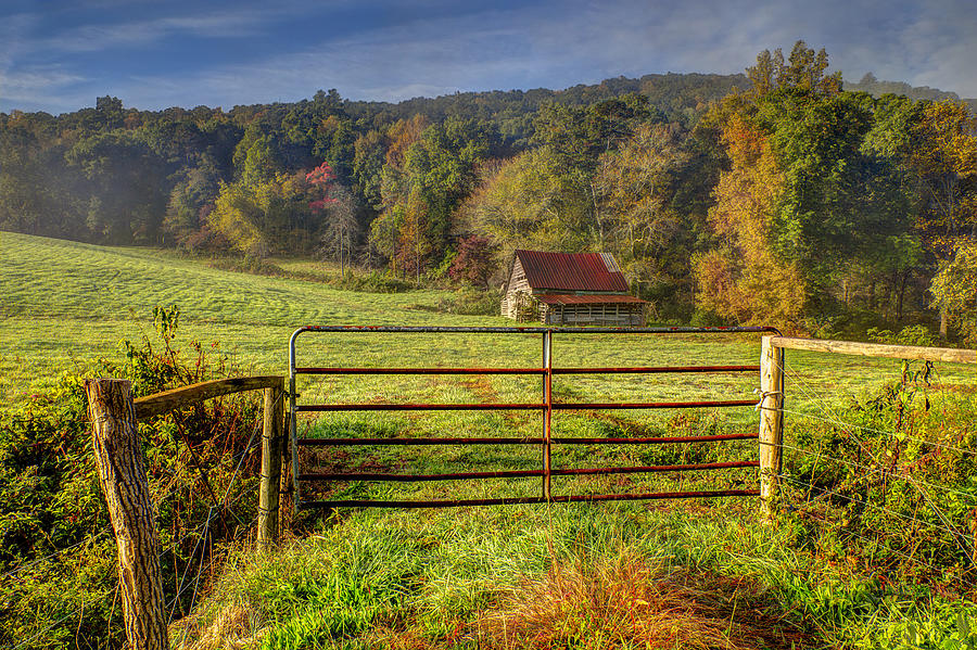 Appalachia Photograph - Beautiful Reds Of Autumn by Debra and Dave Vanderlaan