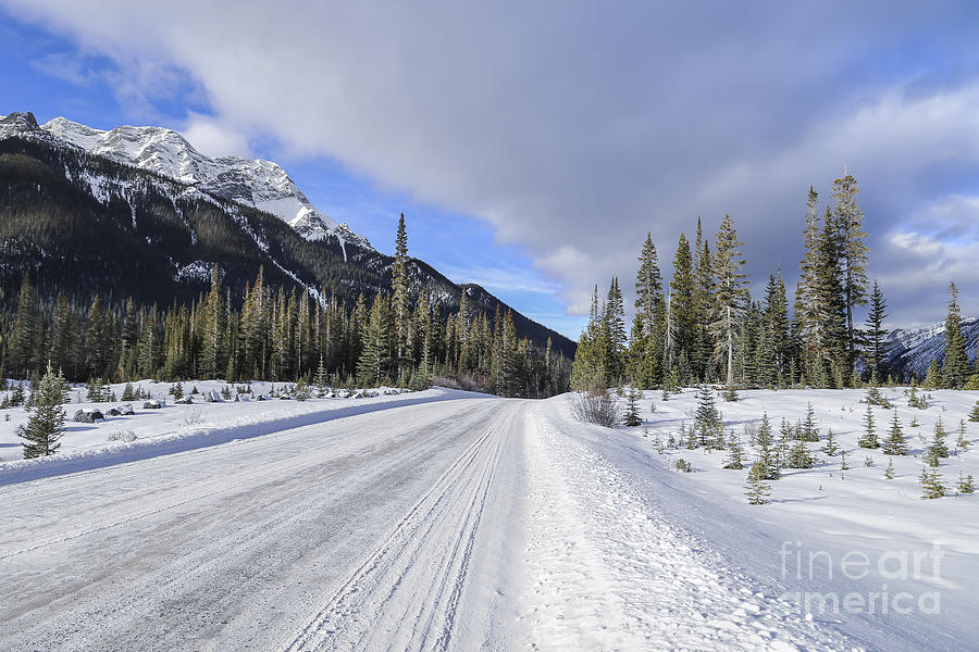 Banff Photograph - Beautiful Ride by Evelina Kremsdorf