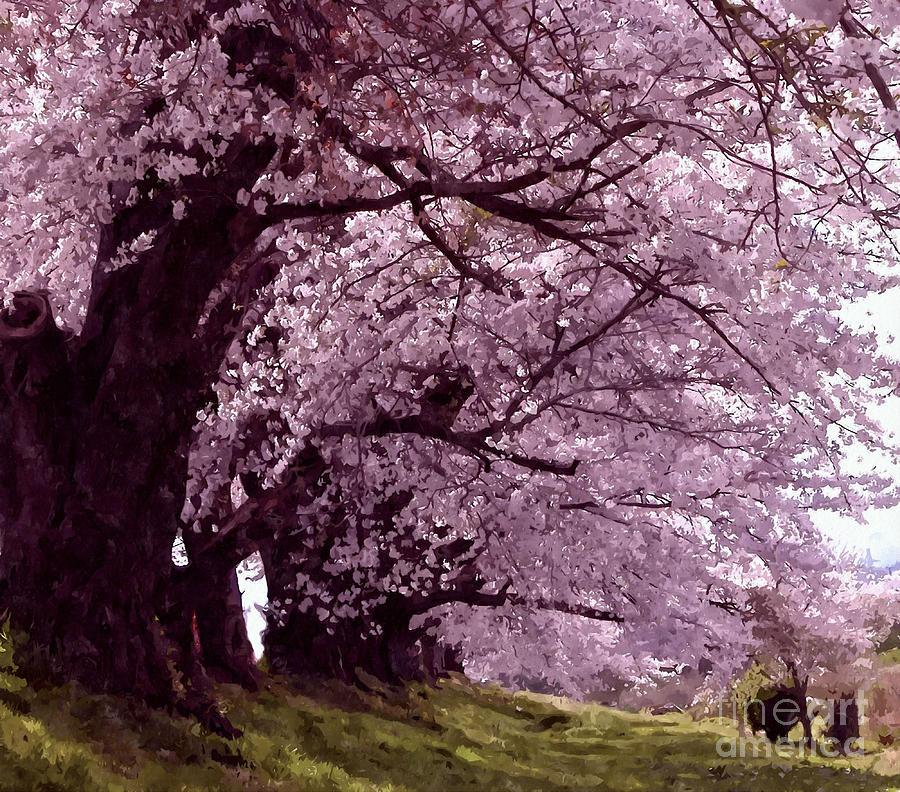 Beautiful Sakura Tree Painting By Lanjee Chee