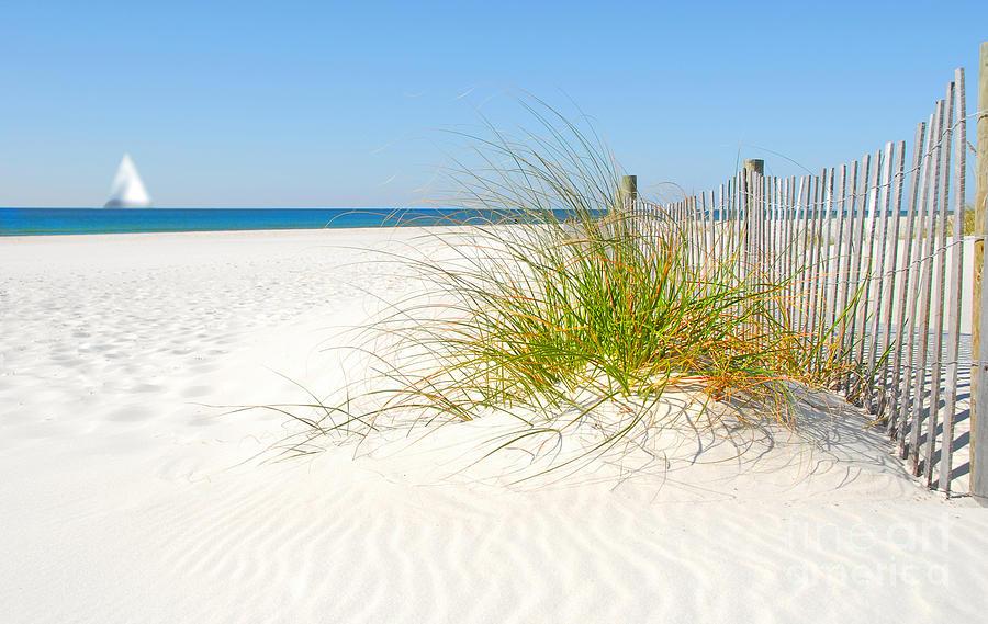 Beautiful Photograph - Beautiful Sand Dune by Boon Mee
