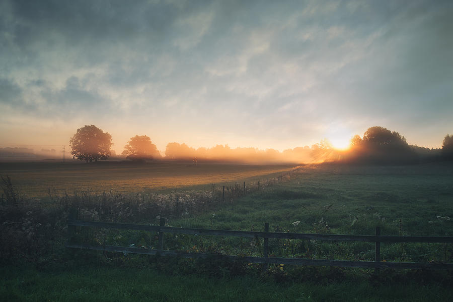 Beautiful sunrise over misty field an early summer morning Photograph by Lkpgfoto