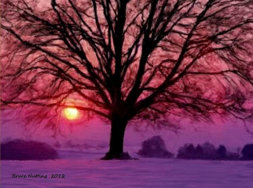 Tree Painting - Beautiful Tree on a Winter Evening Sunset by Bruce Nutting