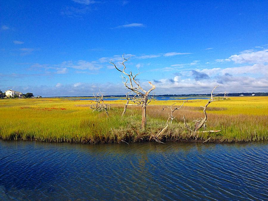 North Carolina Photograph - Beautiful View Topsail Island by Joan Meyland
