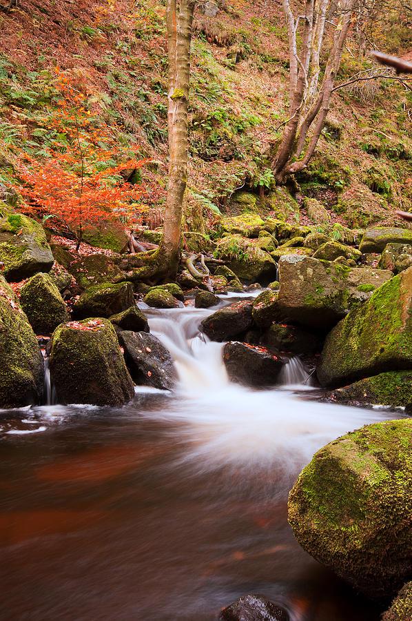 Beautiful Waterfall Flowing Through Autumn Fall Vibrant