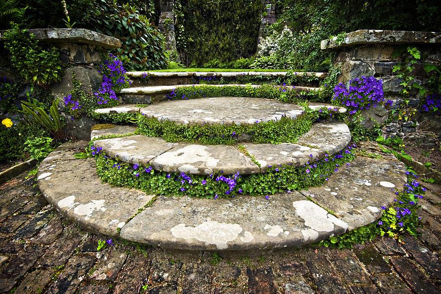 Stone Garden Steps Beautifully planted stone garden steps photograph by meirion matthias garden photograph beautifully planted stone garden steps by meirion matthias workwithnaturefo