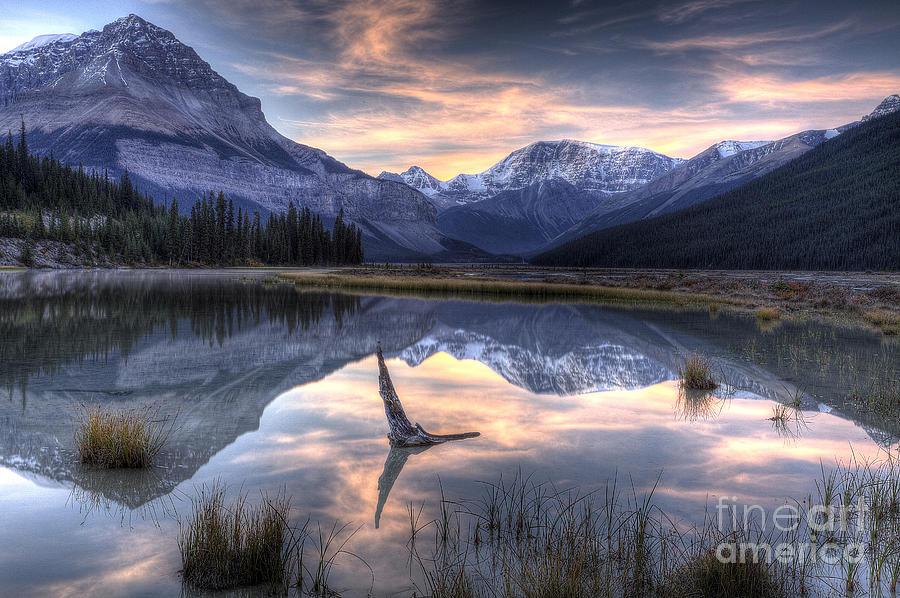 Alberta Photograph - Beauty Creek Pre-dawn by Brian Stamm