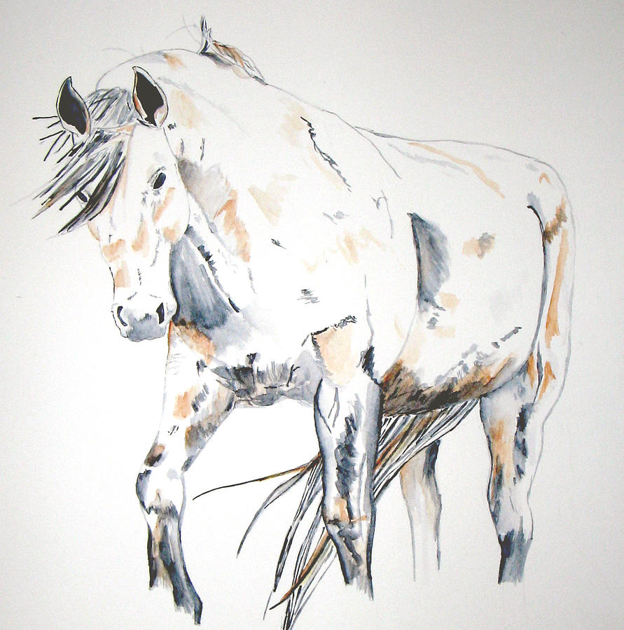 Horse Painting - Beauty by Crystal Hubbard