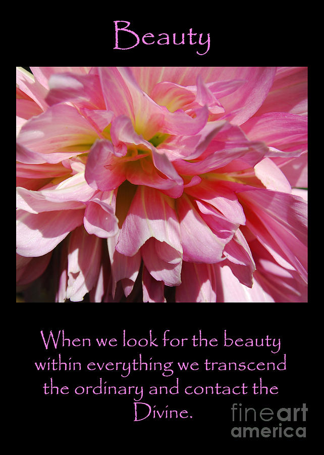 Beauty Dahlia by Victoria Page