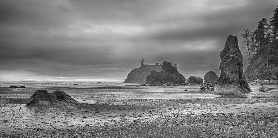Landscape Photograph - Beauty In Grey by James Heckt