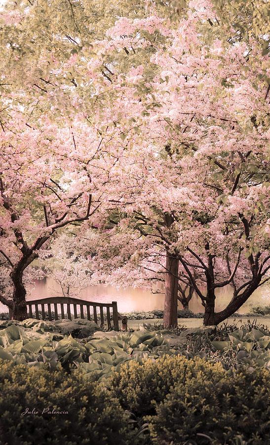 Magical Photograph - Beauty Of A Spring Garden by Julie Palencia