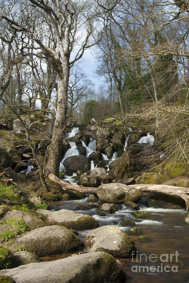 Falls Photograph - Becky Falls Dartmoor by Donald Davis