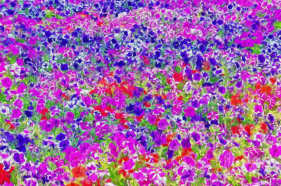 Flowers Photograph - Bed Of Flowers by George Paris