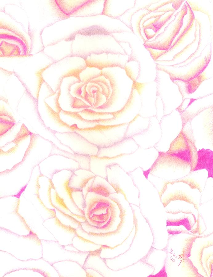 Rose Drawing - Bed Of Roses by Dusty Reed