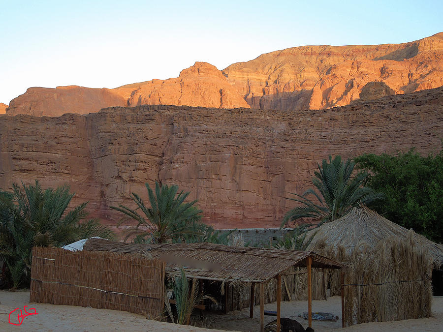 Colette Photograph - Beduin Camp In The Sinai Desert Egypt by Colette V Hera  Guggenheim