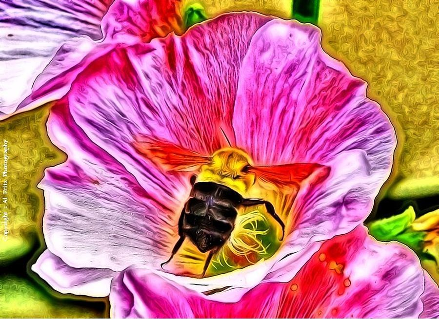 Pink Photograph - Bee Here In Colour by Al Fritz