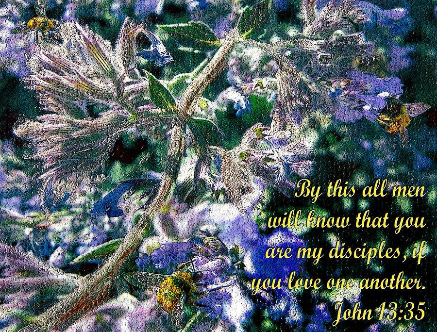 Bees In Harmony - John 13 Photograph