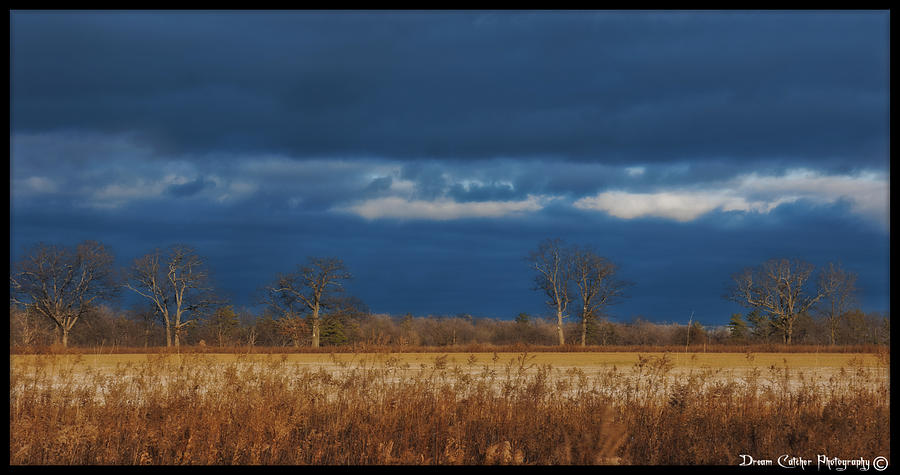 Field Photograph - Before The Storm by Vincent Dwyer