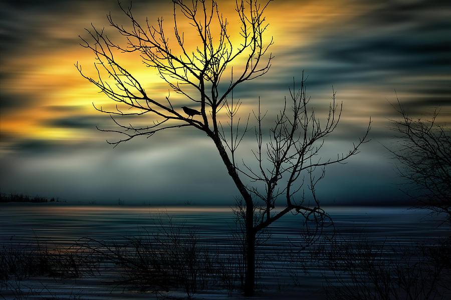 Sun Photograph - Beginnings by Gary Smith