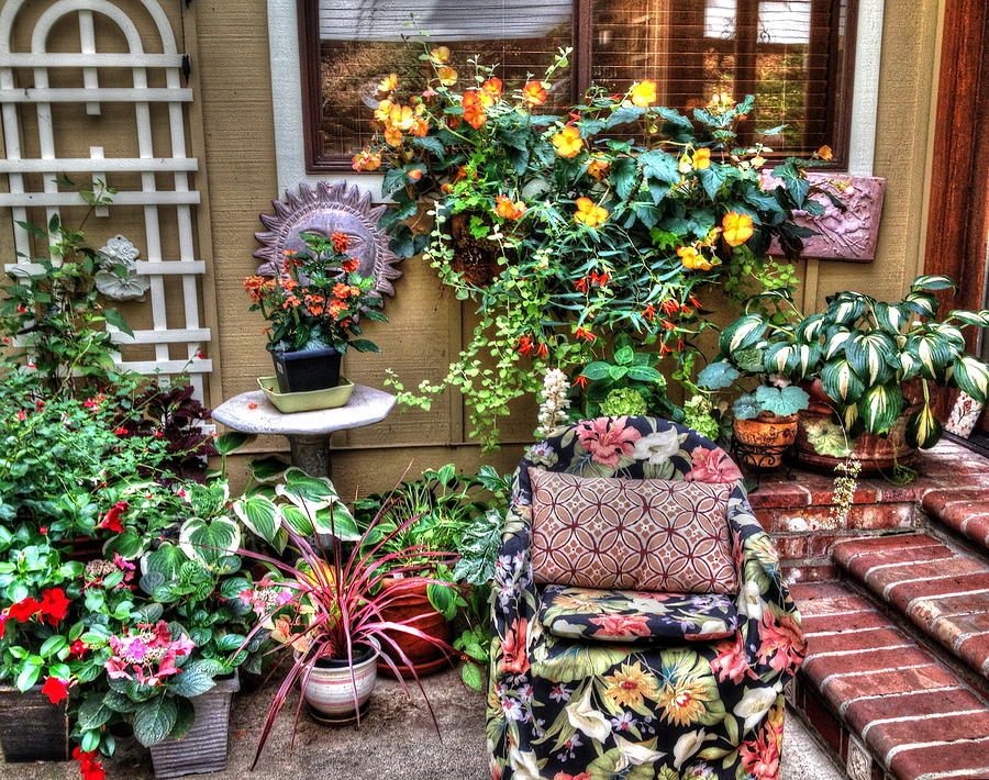 Begonia Garden Photograph By Lynette Mcnees