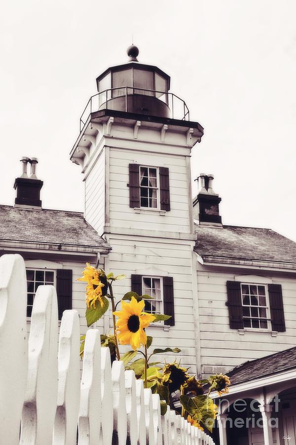 Lighthouse Photograph - Behind The Lighthouse  by Scott Pellegrin