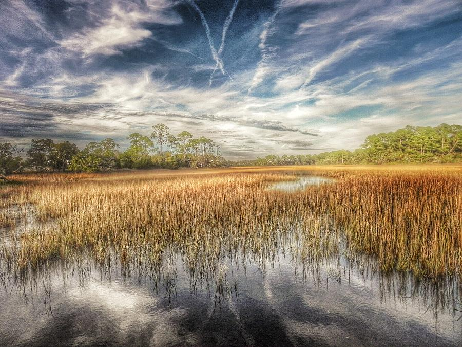 The Marsh Photograph - Believe  by Patricia Greer