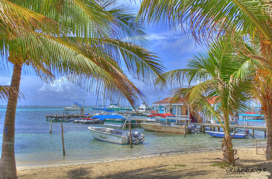 Belize Photograph - Belize Hdr by Debby Richards