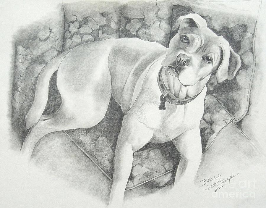 Pet Portraits Drawing - Bella My Pup by Joette Snyder