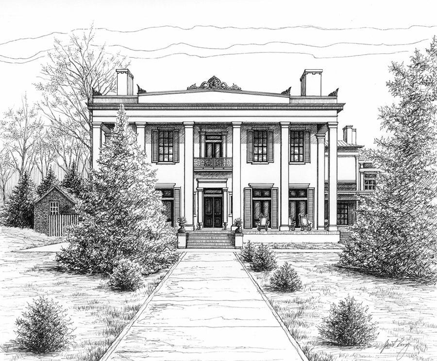 Pen Drawing - Belle Meade Plantation by Janet King
