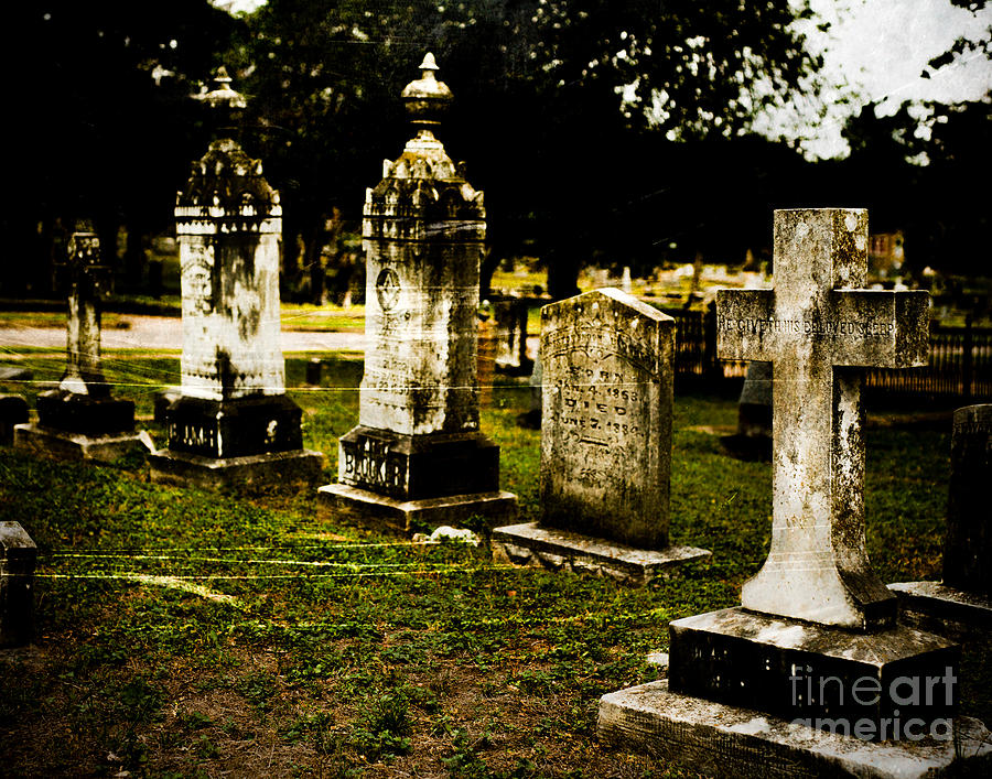 Cemetery Photograph - Beloved by Sonja Quintero