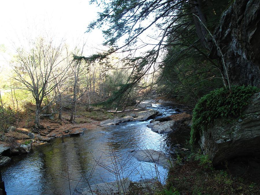 River Photograph - Belvidere Junction Stream Vermont by Barbara McDevitt
