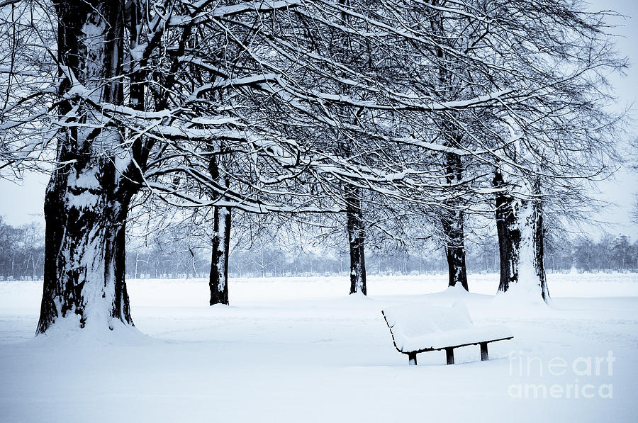 B&w Photograph - Bench In Snow by Lana Enderle