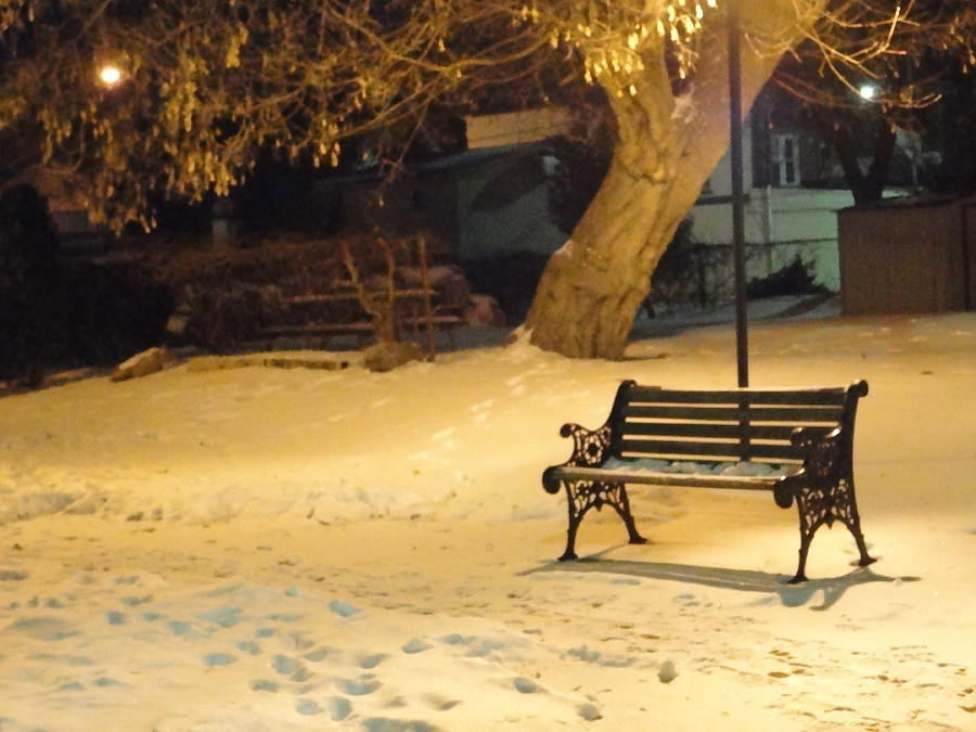 Bench Photograph - Bench In The Winter Park by Guy Ricketts