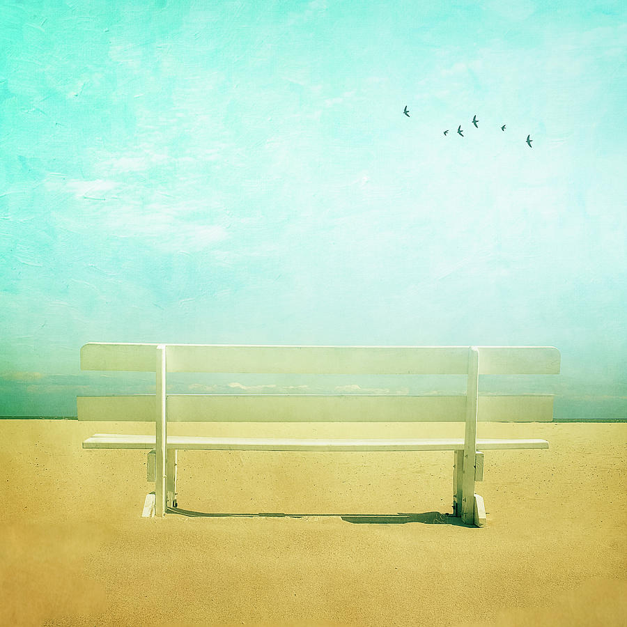 Bench With Clouds And Birds Photograph by Diana Kehoe Photography